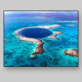 The Great Hole, Belize Reef