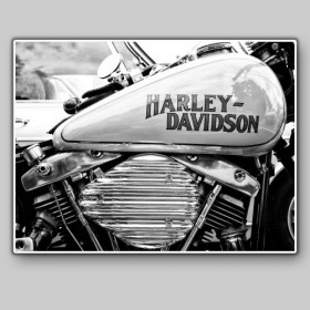Detail of a Harley Davison, Paris, 11 May 2013