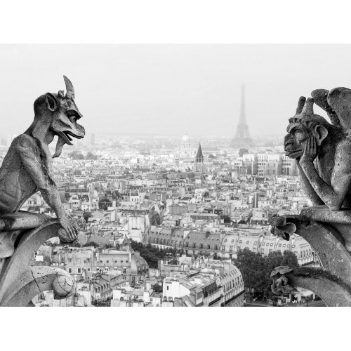 View of Paris from the gargoyles and chimeras of Notre Dame