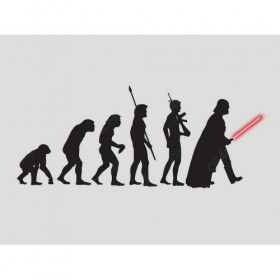 The evolution of Darthwin